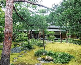 緑豊かで静かな庭園