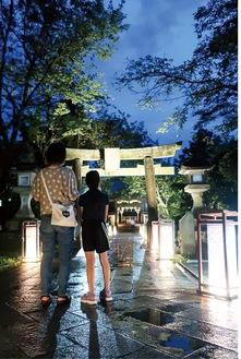 ライトアップされた江島神社奥津宮の参道