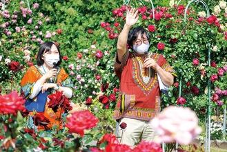 バラ園でカメラに向かって話しかける榎本園長(右)