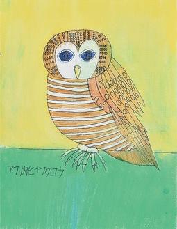 TATSUOさんの「アフリカヒナフクロウ」