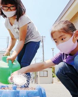 アサガオの種を蒔き、水を遣る児童たち