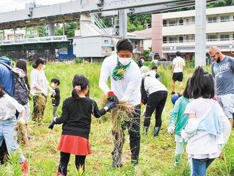 近隣の小学生も参加して草刈りが行われた=5日