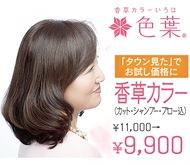髪と肌に優しい香草カラー