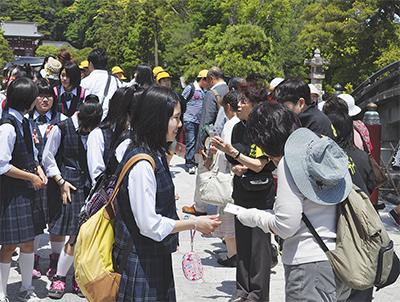 多賀城の中学生が鎌倉に