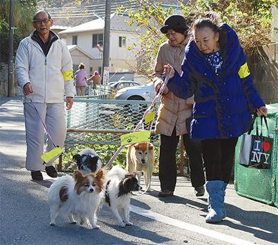 愛犬と守る地域の安全