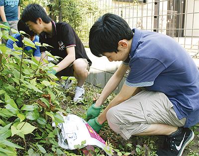 庭の清掃で高齢者支援