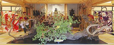 絢爛の美、今年も円覚寺で