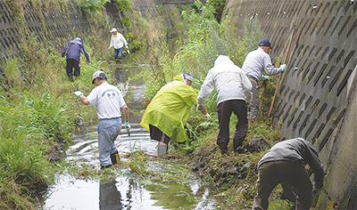 雨にも負けず新川清掃
