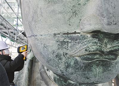 大仏の保存修理を公開「作業は順調」