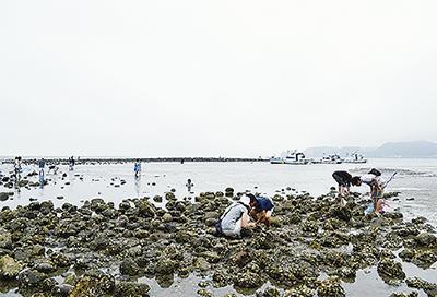 鎌倉と自然〜和賀江島〜