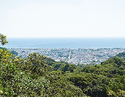 鎌倉の名所〜段葛〜