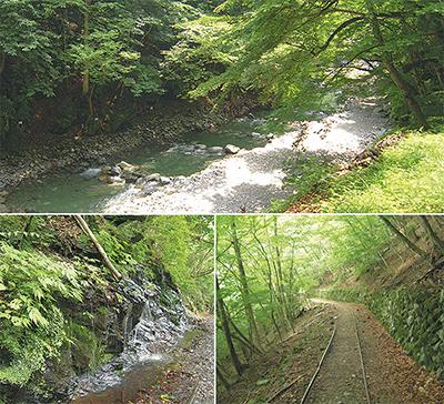 荒川源流へ 入川渓谷ハイキング