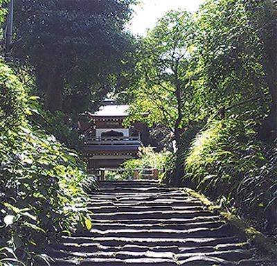 鎌倉と源氏物語〈第20回〉 鎌倉...