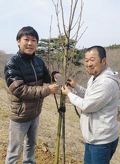 寄付者名が苗木1本ずつに掛けられる(左が小川さん)