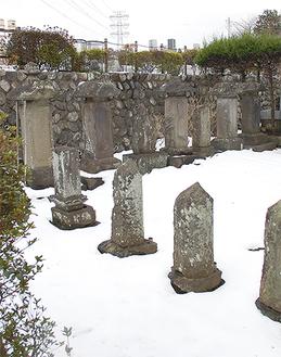 松平家の墓石は整然と並んでいる