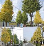 小出中央通り(上)・産業道路(右下)・鶴が台団地(左下)