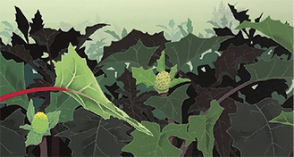 植物をテーマにした作品が並ぶ
