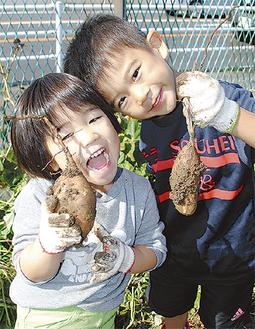 収穫した芋を持つ細川湊平君(右)と葵生ちゃん