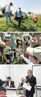 上から小出川に親しむ会、茅ヶ崎野外自然史博物館、平本さんの活動の様子