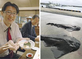 懇親会で刺身などに調理して味わった(左)、茅ヶ崎漁港にあがったカスザメ