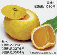「夏味柑」が登場