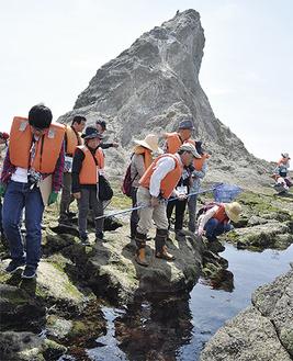 姥島に上陸し自然観察を行った