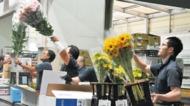 茅ヶ崎にも届く旬の花