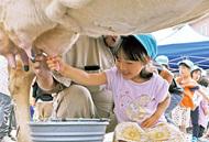 園児たちが乳搾り体験