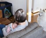 孤独増すコロナ下の出産