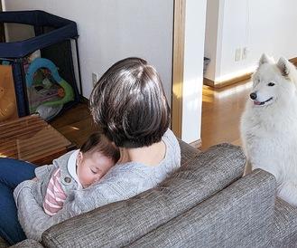 愛娘を抱っこするちふみさん。隣では愛犬が見守る