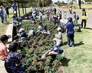 SDGs意識し公園に植栽