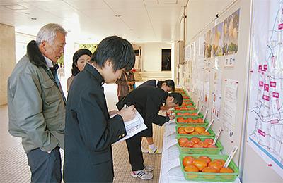 柿の品評会を取材