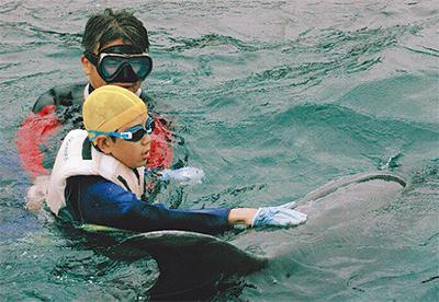 イルカ触れ「笑顔」