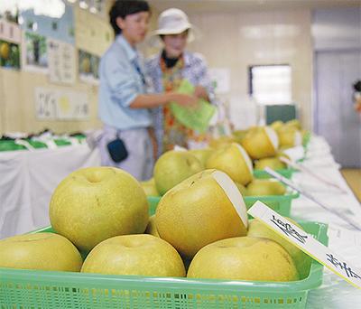 旬のフルーツを品評