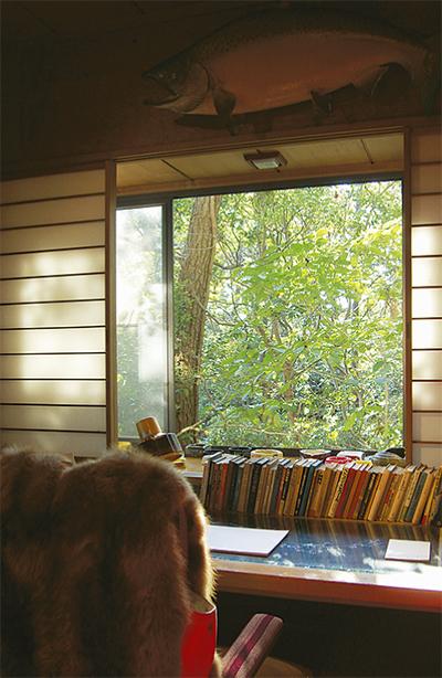 書斎からの景色保存