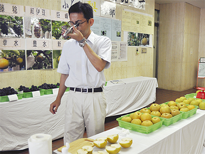 茅ヶ崎フルーツを審査
