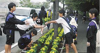 町内3中学校から有志生徒も参加した
