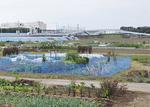 茅ヶ崎市の「道の駅」計画地