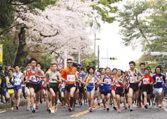 桜と駅伝を楽しめる恒例イベント