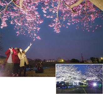 上写真は昨年の模様(H29写真コンクール入選作品)。右下は一昨年の試験点灯の様子