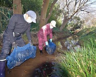 竹炭入りの袋を沈めて水質浄化を図る