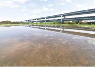 1万平方メートルの天然芝に整備