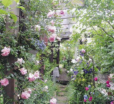 バラの咲く季節にオープンガーデン