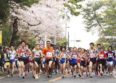 桜と駅伝を満喫