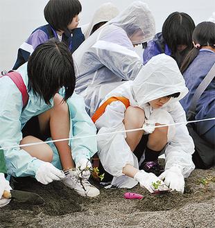 植栽を行う太洋中学校の生徒ら