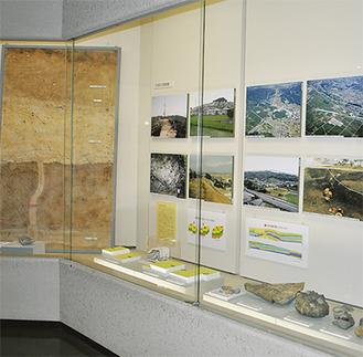 左が、大きく見応えがある「液状化の剥ぎ取り標本」。右下には大小サイズの礫が並ぶ