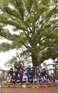 手づくりの広場の前で笑顔を見せる児童を青々と茂る楠が見守る