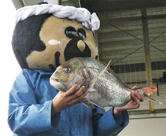 真鯛を掲げるタマ三郎