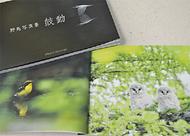 野鳥写真集を出版