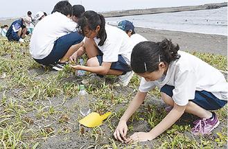 植栽する学生たち